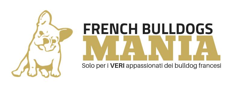 french bulldog mania