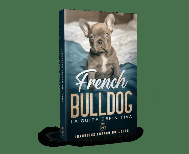 French Bulldog La Guida Definitiva